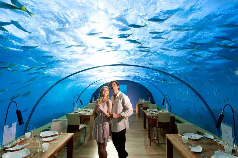 1349852364_ithaa-underwater-restaurant-10