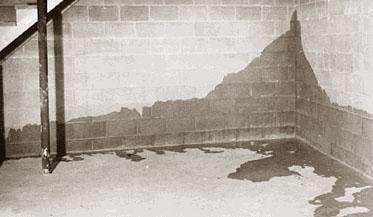 На фото – результат просачивания грунтовых вод в подвал