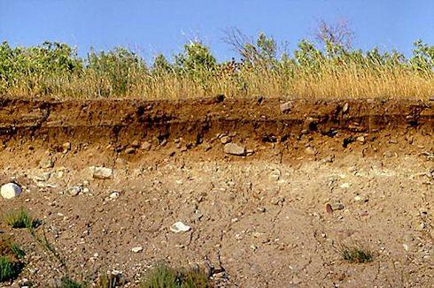 Состав и строение почвы играют определяющую роль при выборе параметров конструкции фундамента.