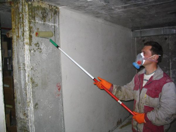 Спасаем от грибка и стены погреба, обрабатываем их антисептической грунтовкой.
