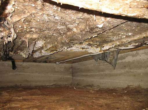Вода в подвале – это серьезная проблема