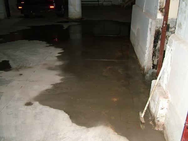Фото затопленного подвала, в котором образовалась плесень на несущих стенах от неправильной гидроизоляции цоколя.