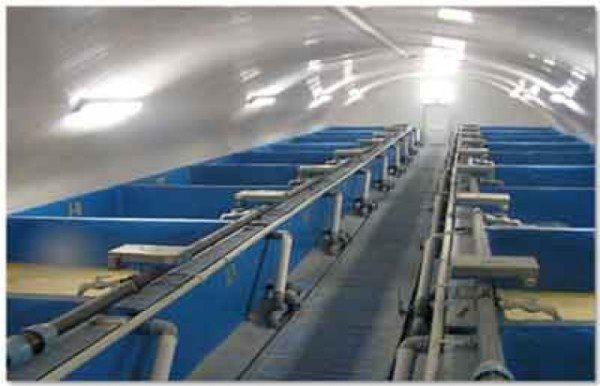 Подвал, оборудованный для выращивания раков
