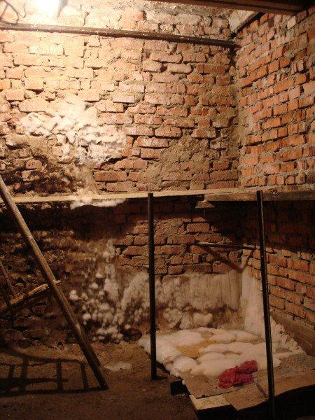 Типичное состояние погреба к началу заморозков. Белые наросты на стенах - не изморозь, а плесень.