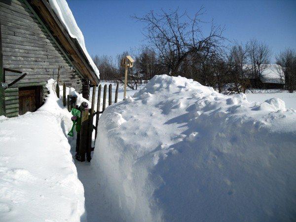 Зимой вся вода скапливается на поверхности в виде снега и льда.